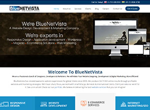 Blue Net Vista